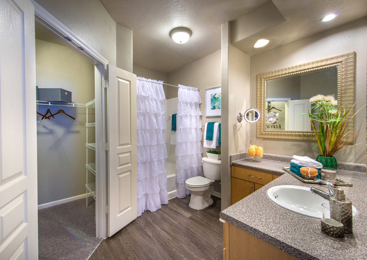unique-bathroom-layout-jacksonville-florida